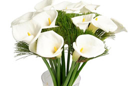 Oferta de la semana en la floristeria Aquarelle: Jarrón de regalo en la compra 15 calas