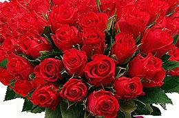 Oferta de la semana en la floristeria Aquarelle: 20 rosas de regalo en el Ramo de 30 rosas rojas en la oferta semanal de Aquarelle para celebrar San Jordi